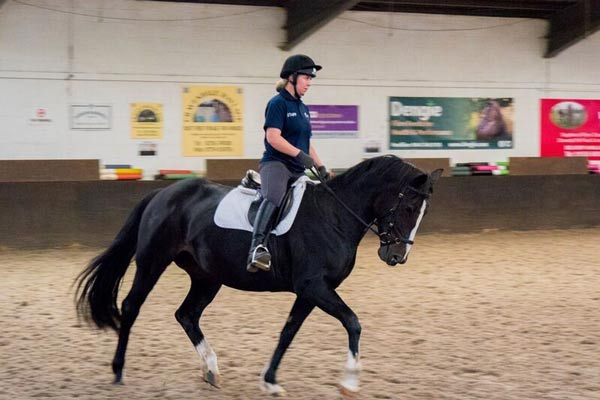 3f564a434 Teaching Riding and Archery since 2016 – Everything about Equestrian ...