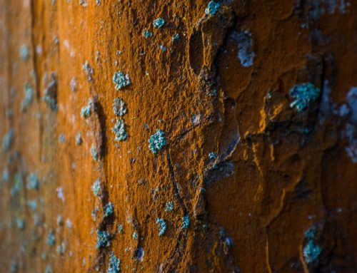 Simple Tips and Tricks on Preventing Rust Build-Up on Metals – An Overview